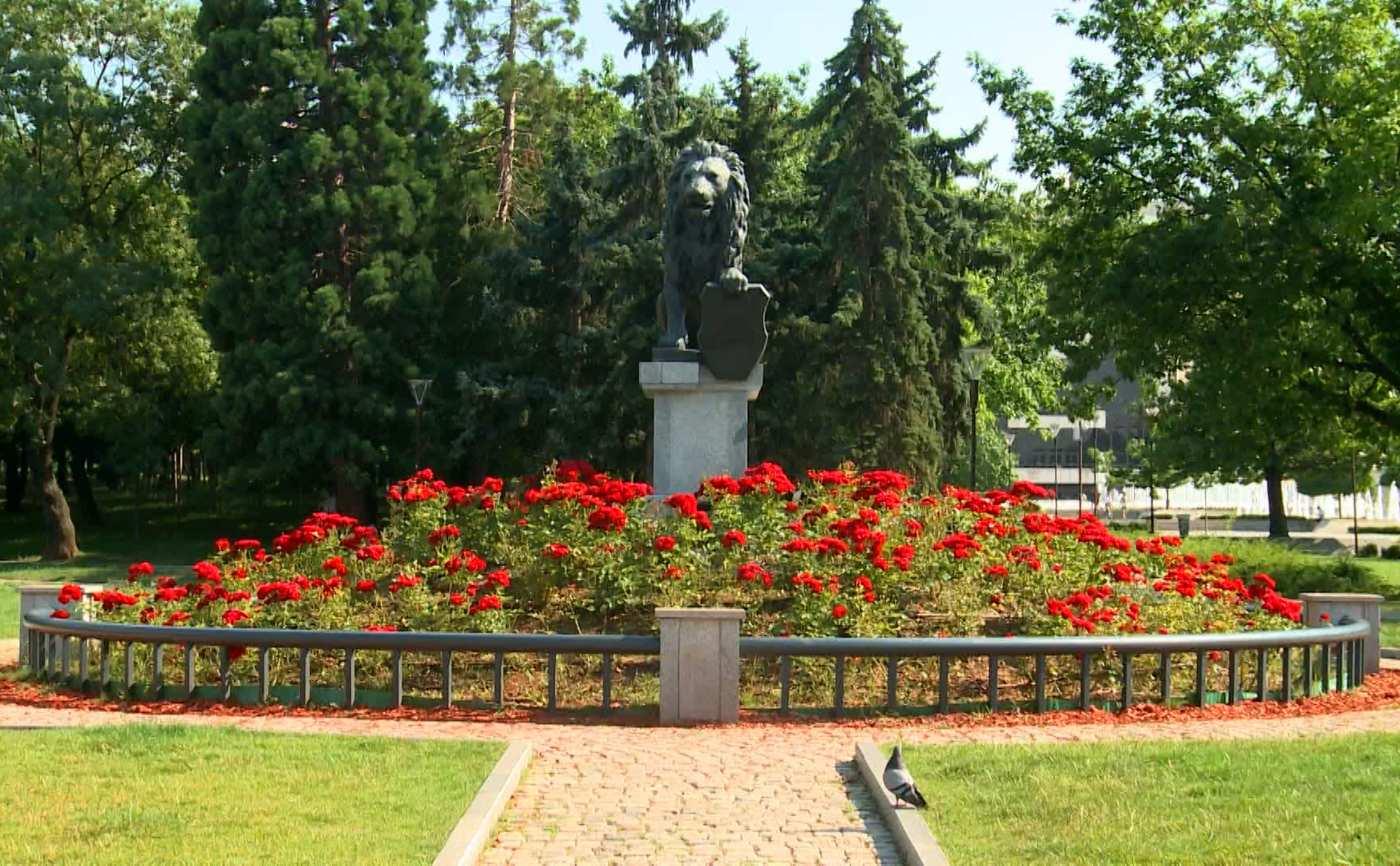 Лято по жълтите павета в София