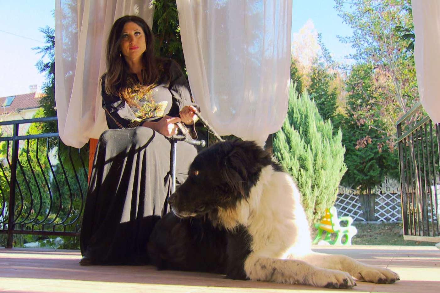 Българско овчарско куче пази Поли Паскова